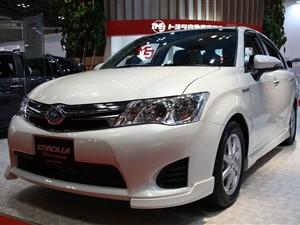 Axio Hybrid Car For Rent
