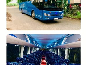 Buses for Hire